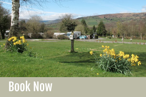 Book a Brecon Beacons Camping Now